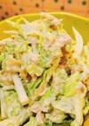 簡単♥白菜とツナのサラダ