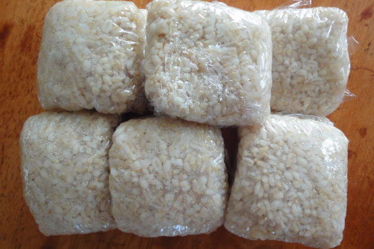 圧力 鍋 玄米