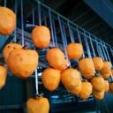 甘柿でも渋柿でも◎簡単!干し柿の作り方。