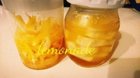 簡単!喉に優しいレモネード(•ө•)♡
