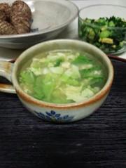 酵素スープ(血管ダイエット食1004)の写真