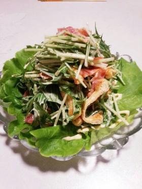 *水菜と焼き油揚げのサラダ*
