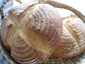 基本の天然酵母パン*ホシノ使用