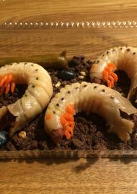 白玉団子でカブトムシの幼虫3(グロ強め)