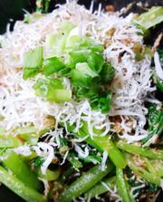 小松菜とちりめんの炒めの写真