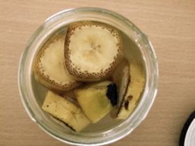 バナナ酵母