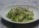 白菜しらす、うまうまレシピ☆