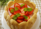 レアチーズケーキdeイチゴのシャルロット