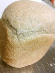 HBにおまかせ紅茶食パンの写真