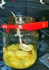 レモンで天然酵母♪