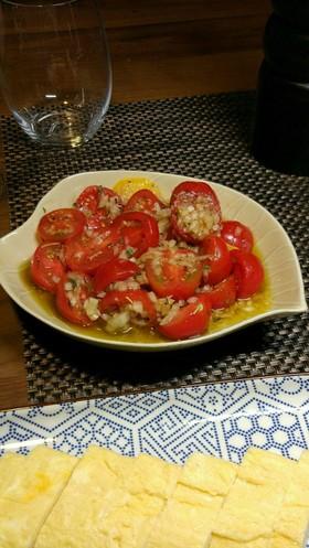 海外でも大人気!トマトのマリネ~ハーブ風