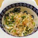 ブロッコリースプラウトの簡単小鉢