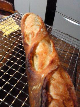捏ねなくていいパンdeフランスパン