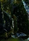 簡単☆韓国海苔の作り方
