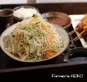 【農家のレシピ】千切りキャベツのサラダ