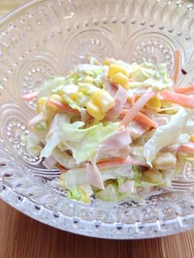 簡単☆白菜deコールスローサラダ