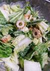 七味入り☆白菜キャベツの味噌マヨサラダ