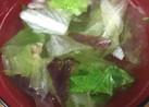 レタスとしょうがでソッコー丸鶏がらスープ