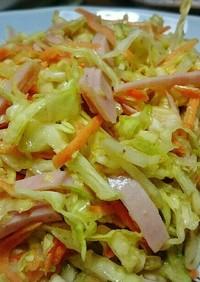 キャベツと人参の簡単サラダ