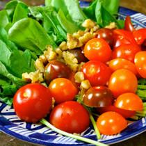 ミニトマト、ルッコラ、胡桃のサラダ、ざくろビネガーソース