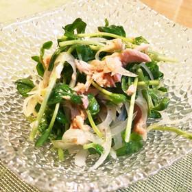 豆苗とツナと玉ねぎのサラダ