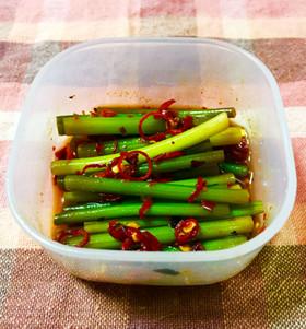 肴に常備菜に♪ニンニクの芽の浅漬け୨୧