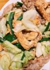 簡単な沖縄料理!フーチャンプルー
