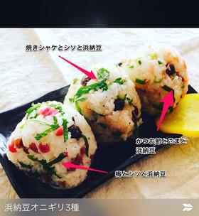 浜納豆三種オニギリ