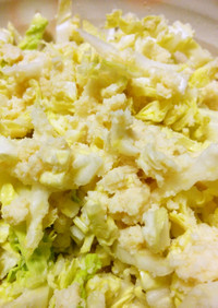 おからし酢味噌の白菜サラダ