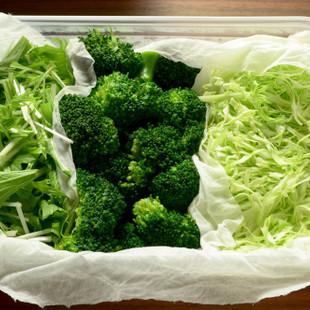 緑野菜のストック