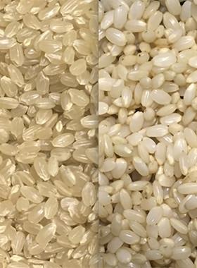 ☆超簡単!初めて作る『発芽玄米』の作り方