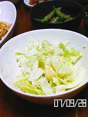 わさびがほんのり、レタスのポテトサラダの写真
