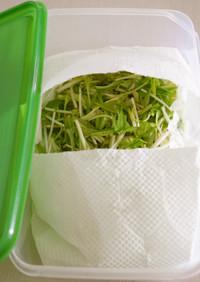 鮮度長持ち*水菜の保存法*