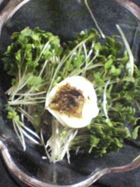 【簡単】ブロッコリーの芽サラダ