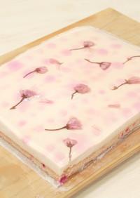 グァバ・ピタヤと桜のチーズケーキ