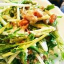 簡単水菜と納豆の白和えサラダ