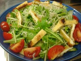 水菜とじゃこの和風サラダ