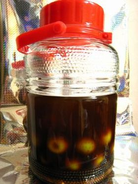 2週間後から飲める梅酒(黒糖)