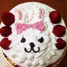【乳卵不用】プリキュア☆アラモードケーキ