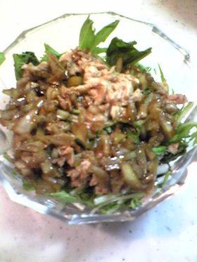水菜とツナでさっぱりサラダ