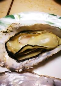 片付け簡単、プリップリの焼き牡蠣。