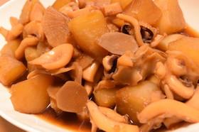 スミイカ(コウイカ)と大根の煮物