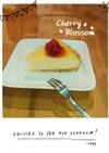 低コスト☆短時間☆ヨーグルトチーズケーキ