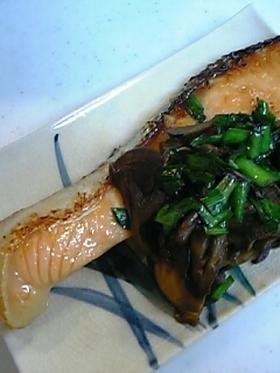 鮭のみりんしょうゆ焼き