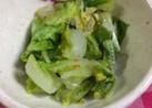 野菜の一品、白菜の酢漬け。