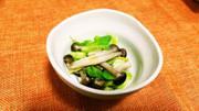 春キャベツとしめじの蒸しサラダの写真