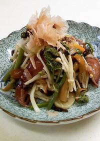 ホタルイカと山菜炒り煮にオリーブオイル