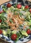 簡単★豆苗の栄養満点サラダ