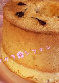 **サクラ咲くシフォンケーキ**