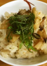 白ミル貝とつくしの炊き込みご飯